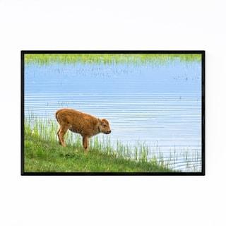 Noir Gallery Yellowstone National Park Bison Framed Art Print