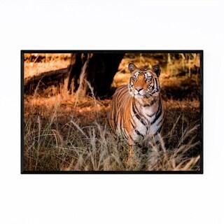 Noir Gallery Bengal Tiger Wildlife India Framed Art Print