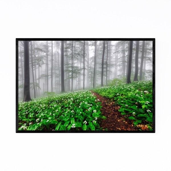 Noir Gallery Bulgaria Misty Green Forest Fog Framed Art Print
