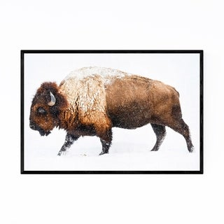 Noir Gallery Snowy Buffalo Peekaboo Animal Framed Art Print