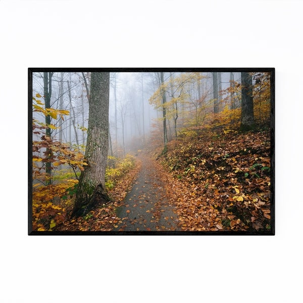 Noir Gallery Virginia Autumn Fall Forest Path Framed Art Print