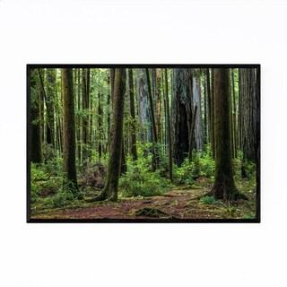 Noir Gallery Redwood Trees Forest California Framed Art Print