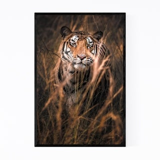 Noir Gallery Tiger Wildlife Animal India Framed Art Print