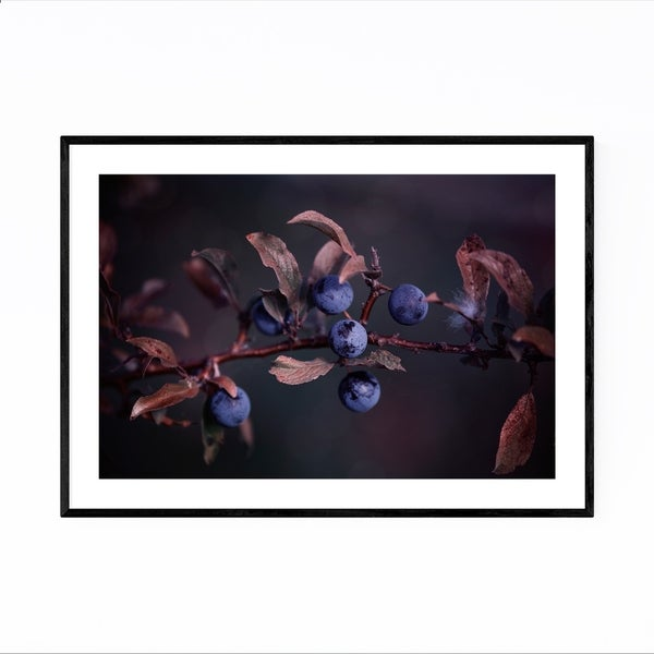 Noir Gallery Blue Autumn Berries Photography Framed Art Print