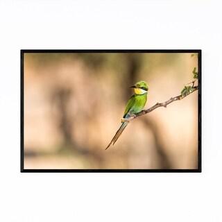 Noir Gallery Swallow-Tailed Bee-Eater Bird Framed Art Print