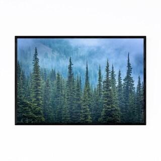 Noir Gallery Olympic National Park Pine Trees Framed Art Print