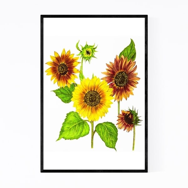 Noir Gallery Sunflowers Floral Botanical Framed Art Print