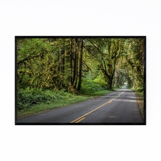 Noir Gallery Olympic National Park Washington Framed Art Print