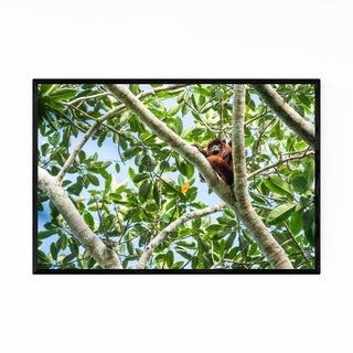 Noir Gallery Red Howler Monkey Wildlife Framed Art Print