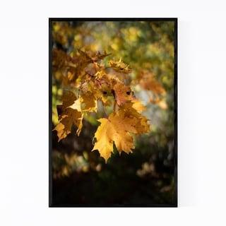 Noir Gallery Autumn Fall Leaves Tree Nature Framed Art Print