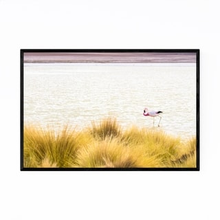 Noir Gallery Flamingo Bird Wildlife Bolivia Framed Art Print