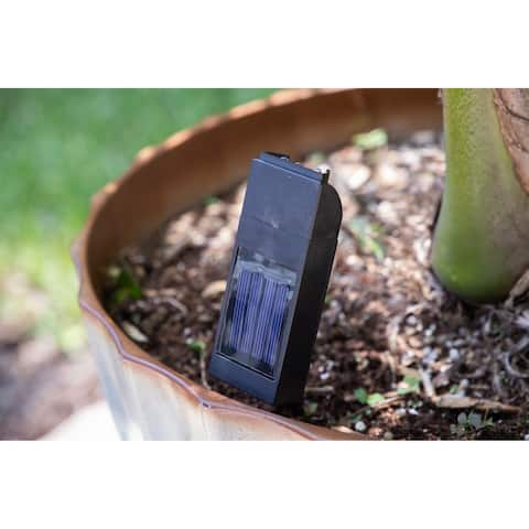 Chlo Black Solar Plant Light- 3 Light Set