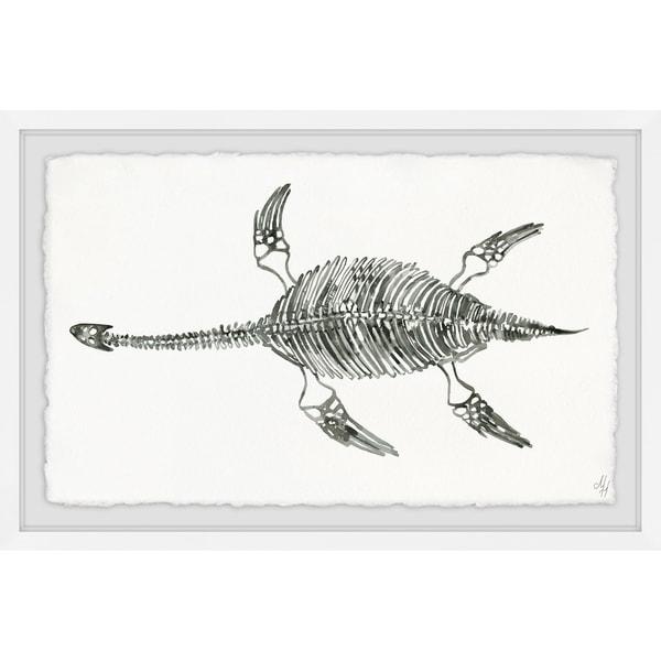 Marmont Hill - Handmade Elasmosaurus Skeleton Framed Print