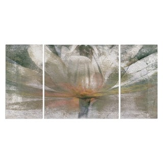 'Lily Light' 3-piece Canvas Wall Art