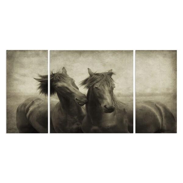 Wexford Home 'Horses Dont Whisper' Premium 3-piece Art Set