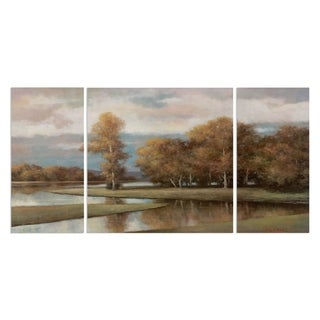Wexford Home 'Winding River II' Premium Multi-Piece Art