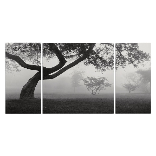 Into the Mist' A Premium Multi-piece Canvas Wall Art