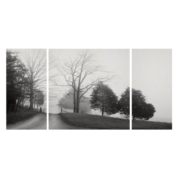 Wexford Home 'Tennessee Morning' Canvas Premium Multi Piece Art
