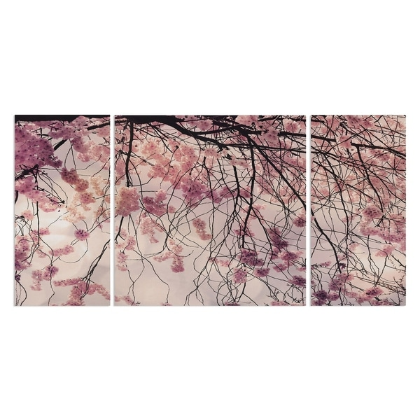 'Spring Song' 3-piece Canvas Wall Art