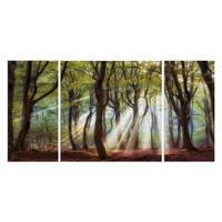 Wexford Home 'Majestic Morning' Canvas Premium Multi Piece Art