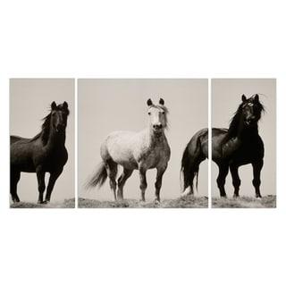 Wild Stallions' A Premium Multi-piece Canvas Art  from Wexford Home