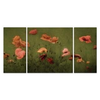 'The Wild Bunch' Premium Multi-piece Art
