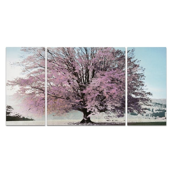 Wexford Home 'Season of Spring' 3-piece Wall Art