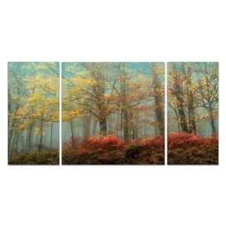 Wexford Home 'Beeches In the Mist' Premium Canvas Multi-piece Hand-wrapped Giclee Wall Art