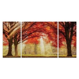 Wexford Home 'Everland' Canvas Wall Art (Set of 3)