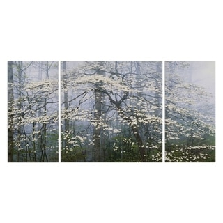 Wexford Home 'Dogwood Canopy' Premium Canvas Wall Art (Set of 3)