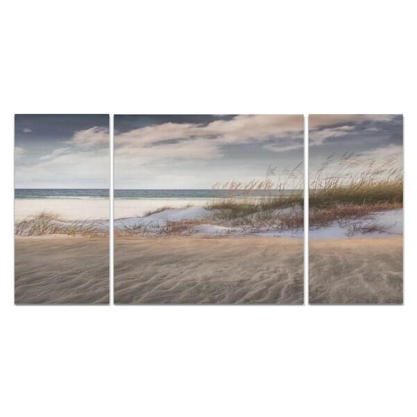 Wexford Home 'Amongst The Sea Grass' A Premium Multi Piece Art