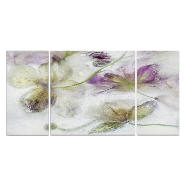 Wexford Home 'Frozen Floral IV' Premium Multi Piece Gallery-wrapped Canvas Art Print