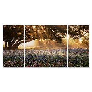 Wexford Home 'Morning Meadow Sunrise' Canvas Premium Multi Piece Art