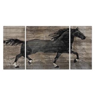 Wexford Home 'Barnwood Horse' Premium Multi-Piece Art