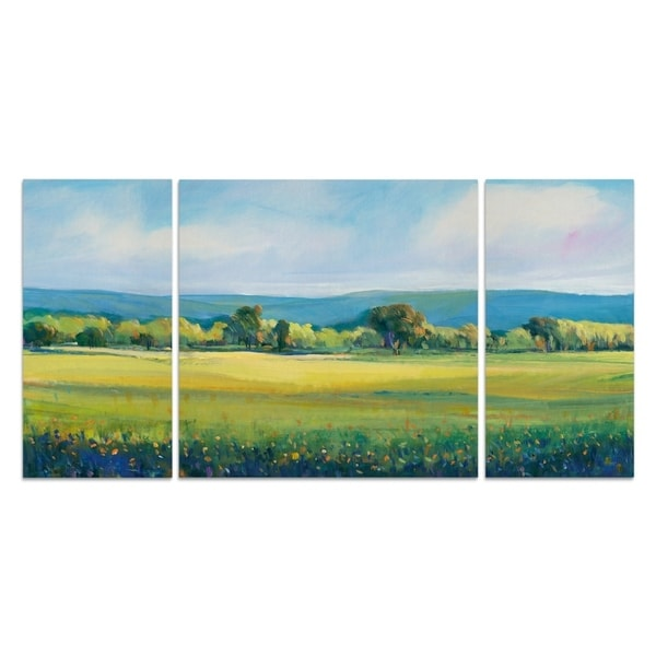 Wexford Home 'Partly Cloudy I' Premium Canvas Wall Art (Set of 3)