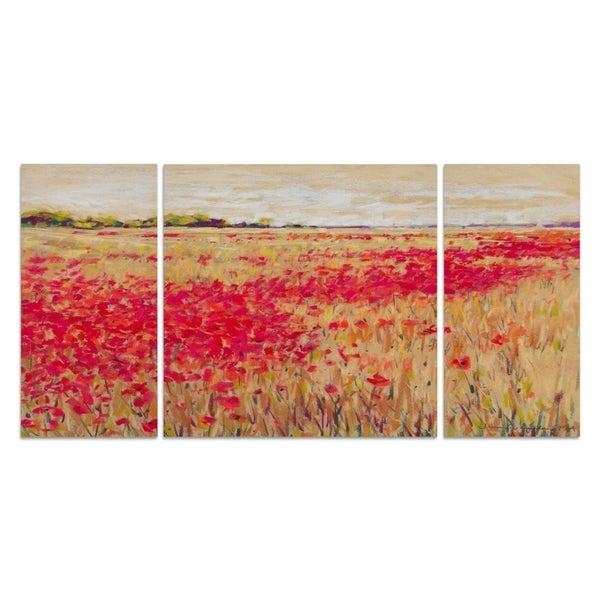 'Poppies' Evening Light I' Canvas Wall Art