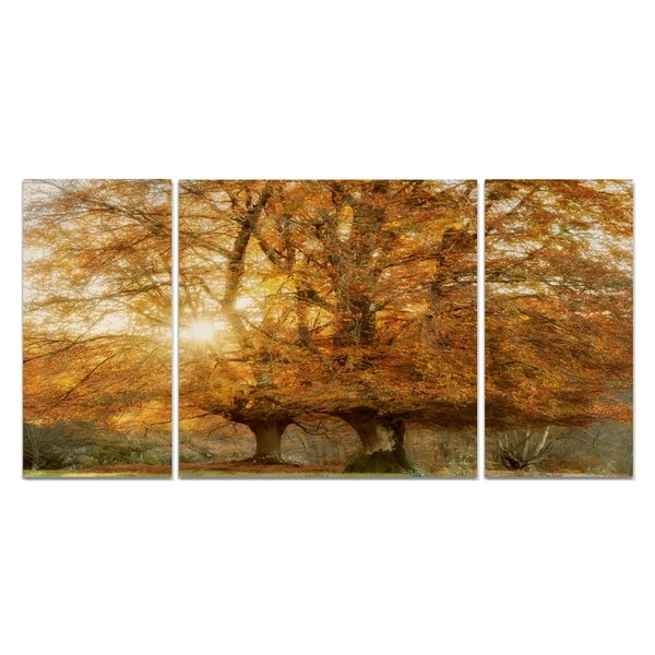 Wexford Home 'Couple of Beeches' Premium Multi-piece Art