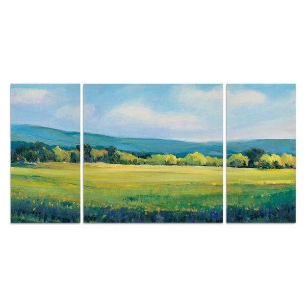 Wexford Home 'Partly Cloudy II' 3-piece Wall Art