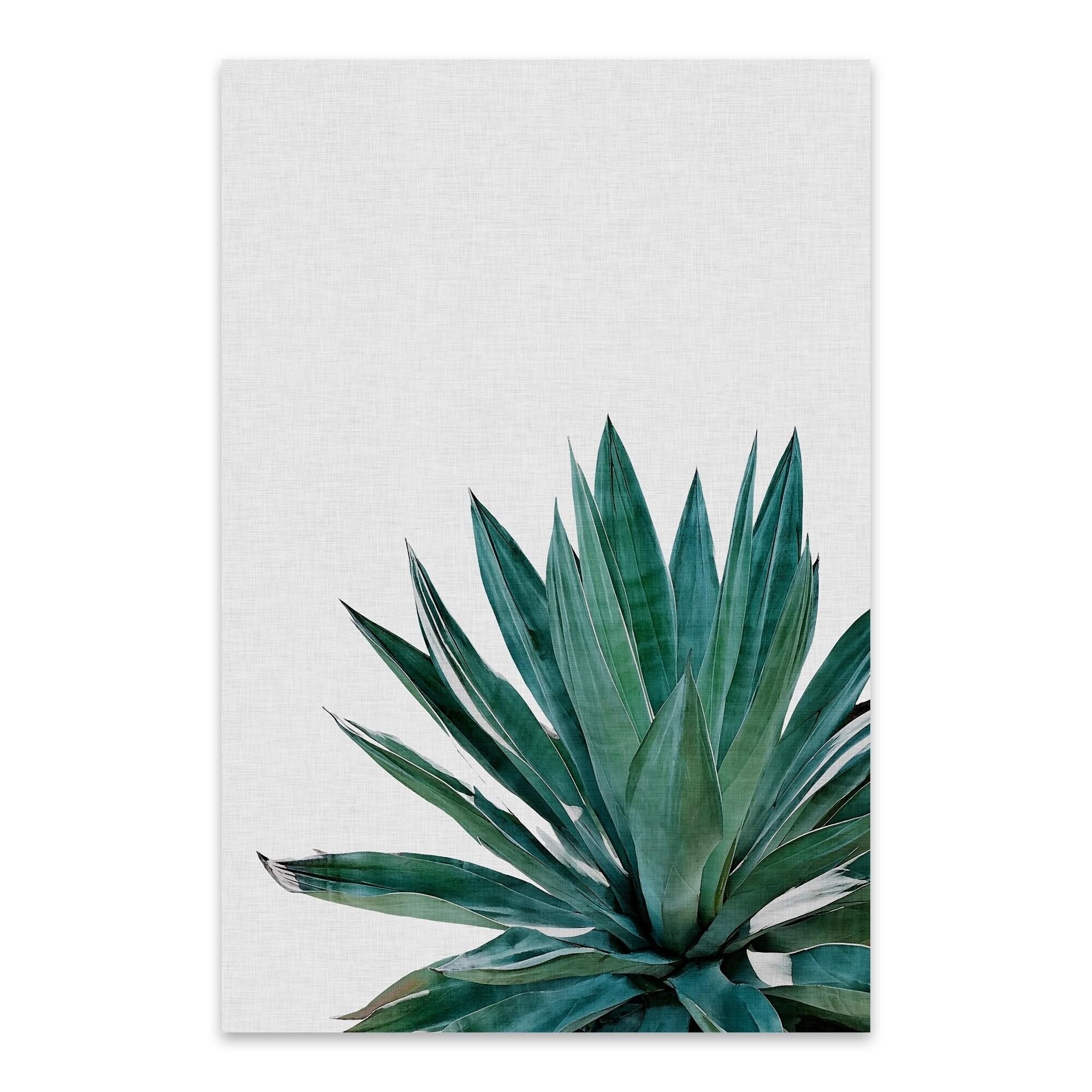 Shop Noir Gallery Orara Studio Agave Cactus Agave Plant Floral