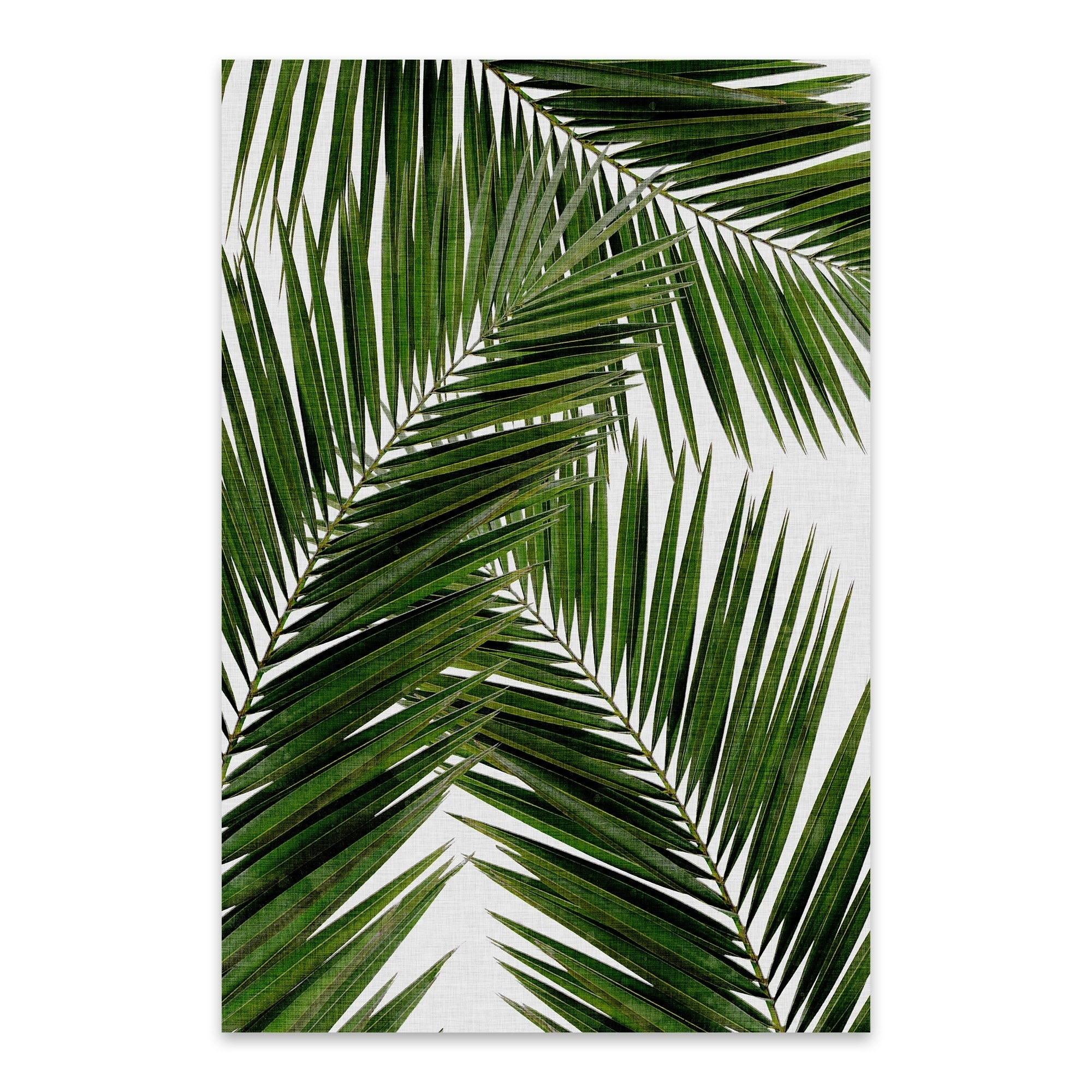 Shop Noir Gallery Orara Studio Palm Leaf Iii Beach Coastal Palm Tree Leaf Metal Wall Art Print Overstock 27559327