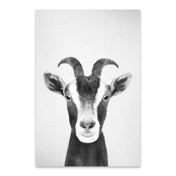 Noir Gallery Gal Design Goat Black White Nursery Kaboo Animal Metal Wall Art Print