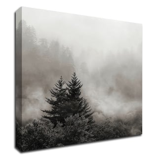 Rising Mist, Smoky Mountains by Nicholas Bell, Print on Canvas, Ready to Hang