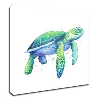 Green Sea Turtle by Sam Nagel, Print on Canvas, Ready to Hang
