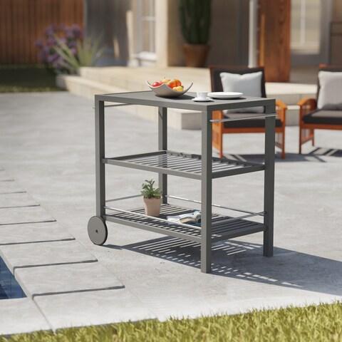 Havenside Home Benji Contemporary Gray Wood Outdoor Bar Cart
