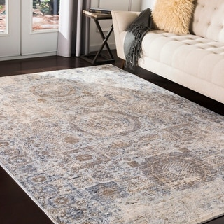 """Janele Distressed Traditional Area Rug - 2'7"""" x 10'3"""" Runner"""