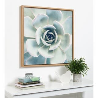 Kate and Laurel Sylvie F2 Images Succulent Square Framed Canvas