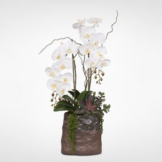 Real Touch White Orchids with Succulents in a Ceramic Vase