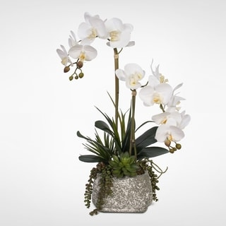 Real Touch Phalaenopsis Orchids with Succulents in a Concrete Pot