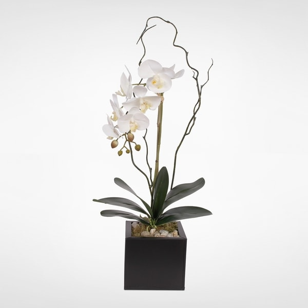 Real Touch White Orchid w/Pebbles in a Black Metal Cube Pot