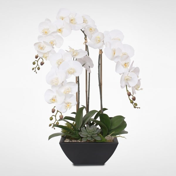 Real Touch White Orchids and Succulents in a Black Metal Zinc Pot